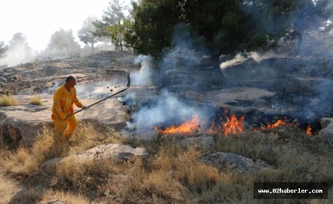 Adıyaman'da Ormanlık Alanda Yangın