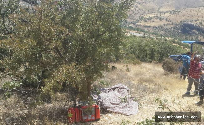 Yaşlı Adam Ormanlık Alanda Ölü Bulundu