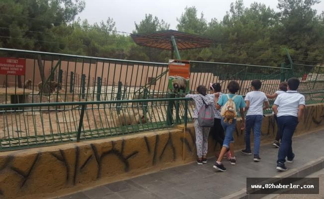 Çocuklar Hayvanat Bahçesinde Gönüllerince Eğlendi