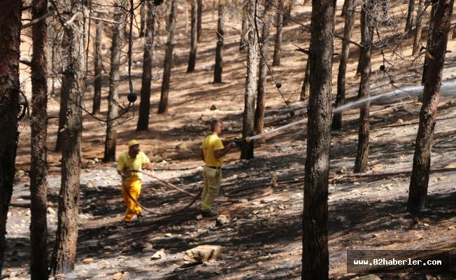 Karadağ Ormanlık Alanında Yangın