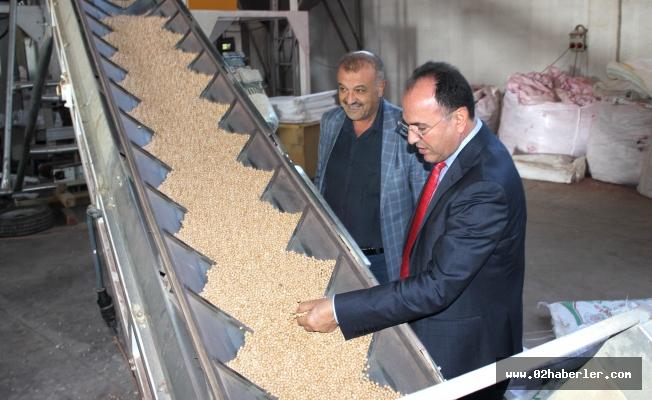 Adıyaman'dan yurt dışına tohum ihracatı