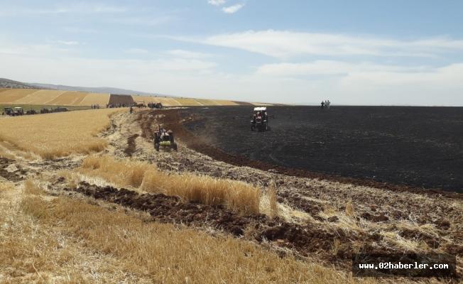 Buğday ve Arpa Tarlaları Küle Döndü