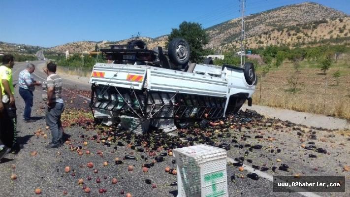 Meyve yüklü kamyonet takla attı