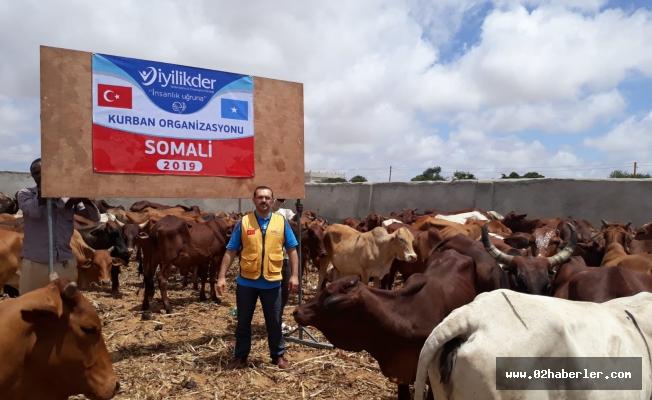 Adıyaman'dan Somali'ye Kurban Bağışı