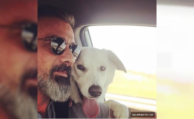 Kaybolan köpekleri için tatillerini yarıda kestiler