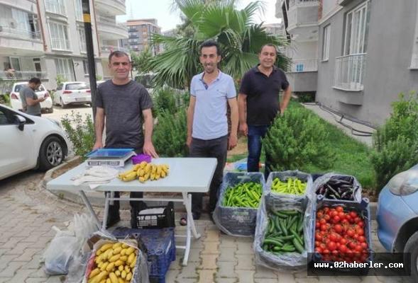 Site İçinde Sebze ve Meyve Reyonu Açtılar