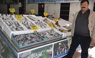 """Profesyonel Balıkçılar """"Oltacılardan"""" Dertli"""