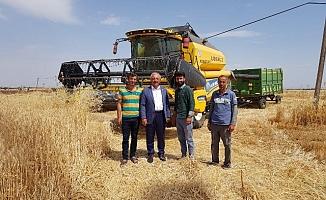 Başkan Şahan'dan hasat değerlendirmesi