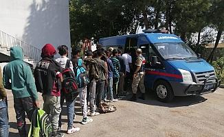 Jandarma ekiplerinden kaçak göçmen operasyonu