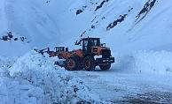 Sincik'te karla mücadele günlerdir devam ediyor